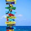 Sydney beaches for campervan holidays