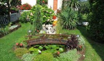 Home & Garden: euthanasia