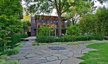 Home & Garden: Tree Diseases: Magnolia Bark