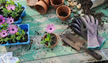 Home & Garden: How Does a Kitchen Fire Start?