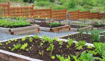 Home & Garden: Gazebo Canopies - Perfect Gazebo Canopies For Your Garden