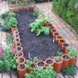 Fort Worth Landscaping Professionals Offer Your Garden Quality Looks