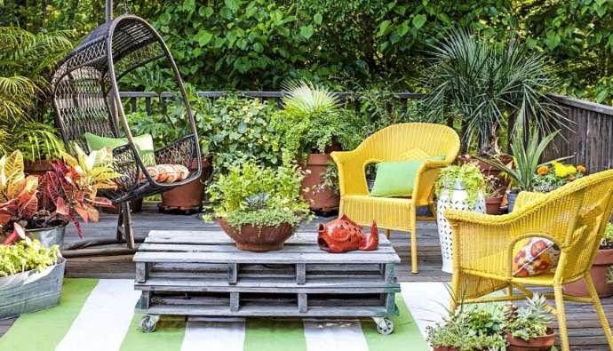 Natures Fertilizer For House Plants